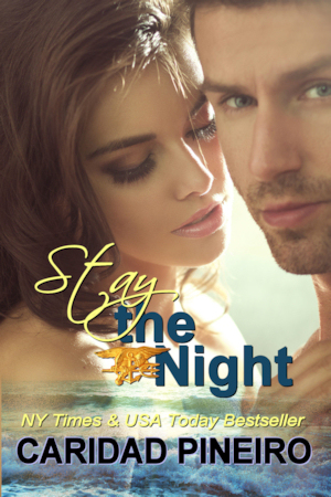 STAY THE  NIGHT Navy Seal EroticRomance