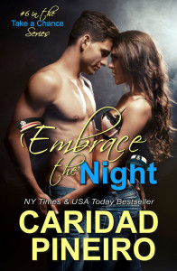 ONE NIGHT OF PLEASURE erotic romance